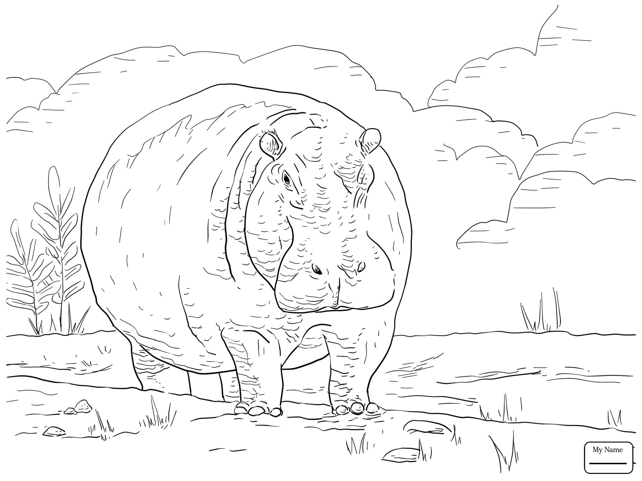 2089x1567 Coloring Pages For Kids Hippopotamus Cute Cartoon Hippo Mammals