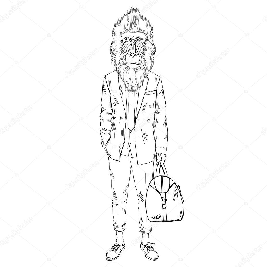 1024x1024 Mandrillus Sphinx Monkey Hipster Sketch Stock Vector Olga