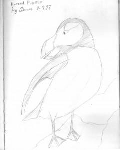 240x300 Drawing Animals