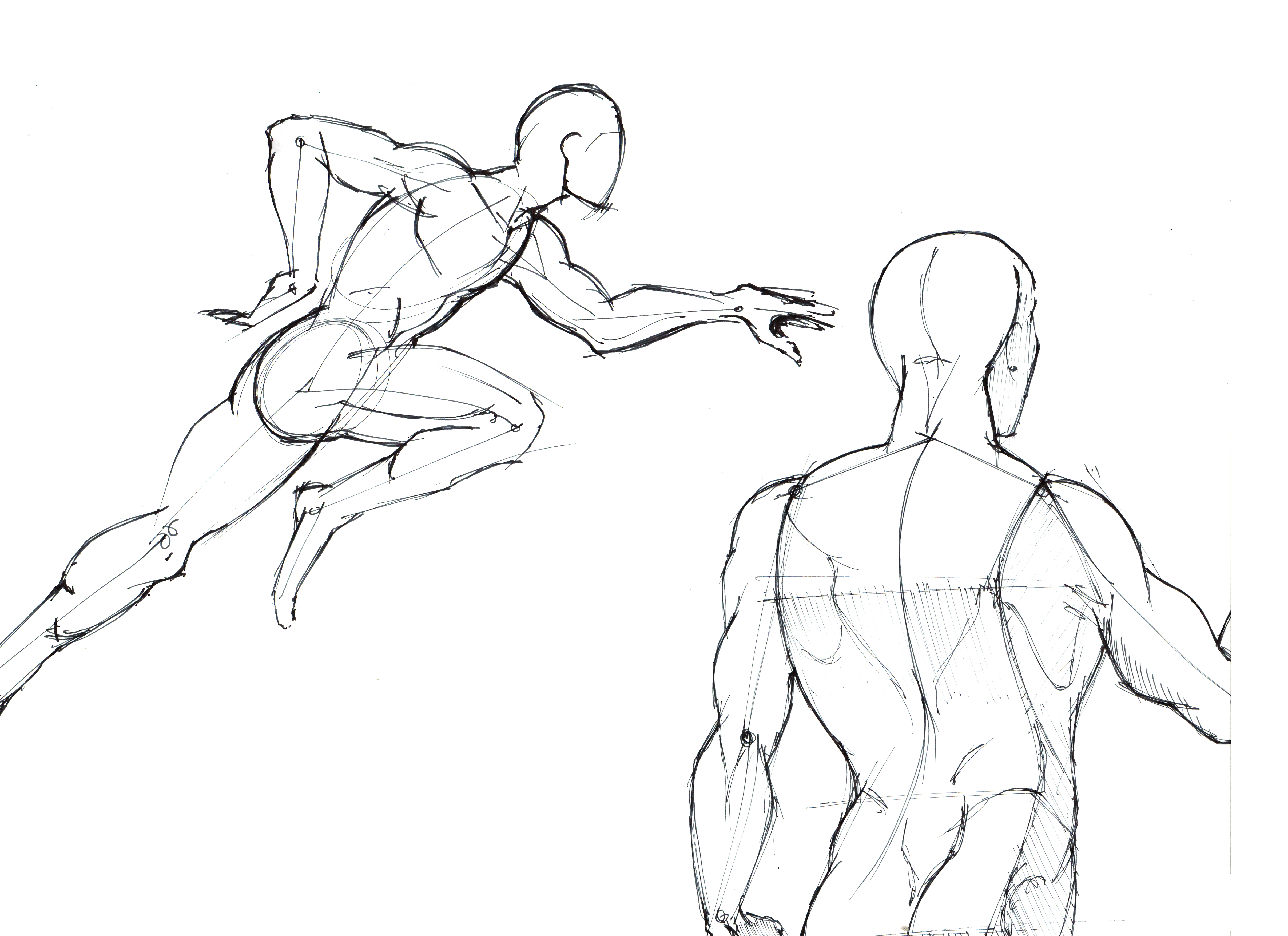4828x3508 Dynamic Figures Lineweights