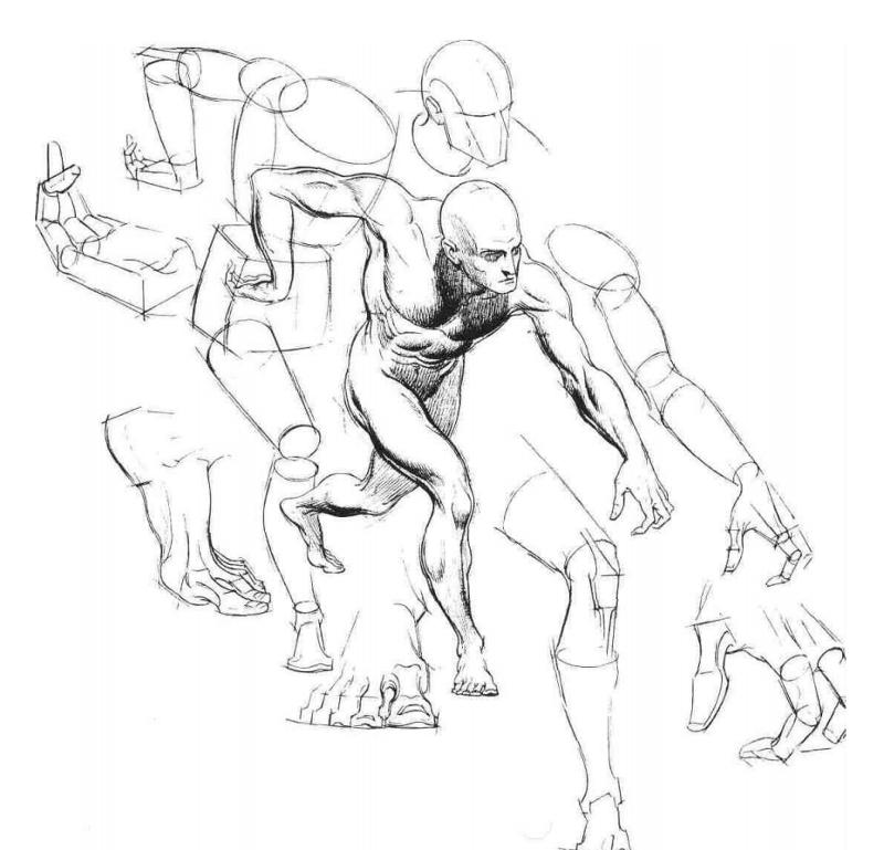 800x769 Gimp Chat Free Figure Drawing Pdf