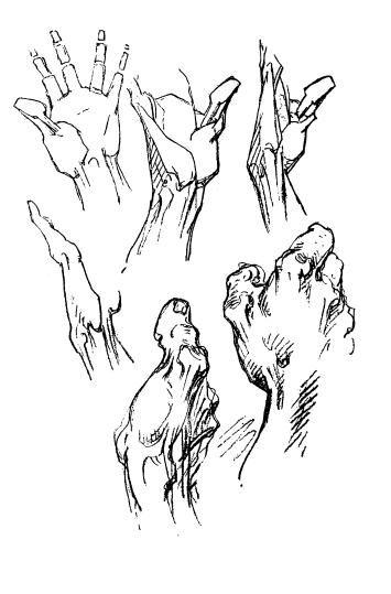 355x539 George Bridgman Constructive Anatomy Hand Drawings