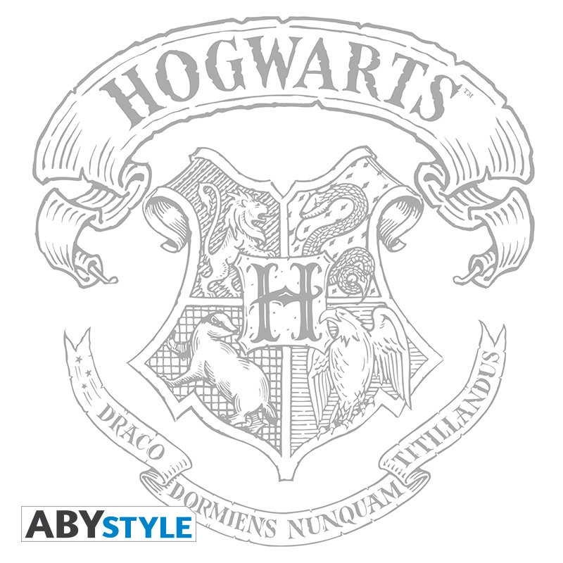 800x800 Harry Potter T Shirt Hogwarts Woman