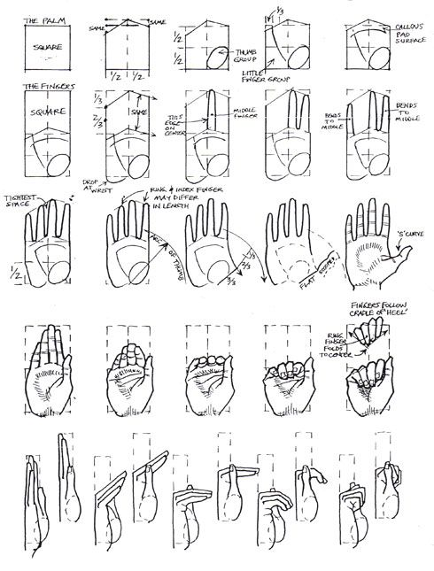 490x645 Learn To Draw Hands Step By Step How To Draw Holding Hands