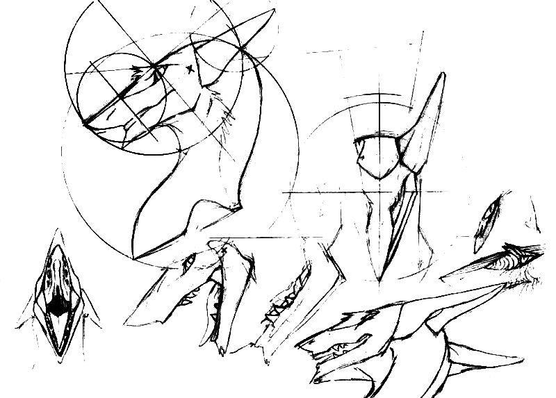 800x573 Sergal Head Diagrams Easy Sketch Previous Notice By Mick39