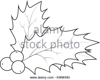 400x320 Christmas Decoration Leaves And Berries Outline Stock Vector Art