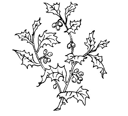 428x387 Deer And Holly Christmas Hand Embroidery Pattern Holiday Designs