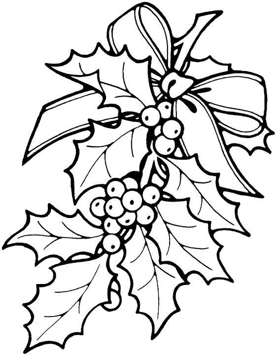 560x720 Drawn Christmas Holly