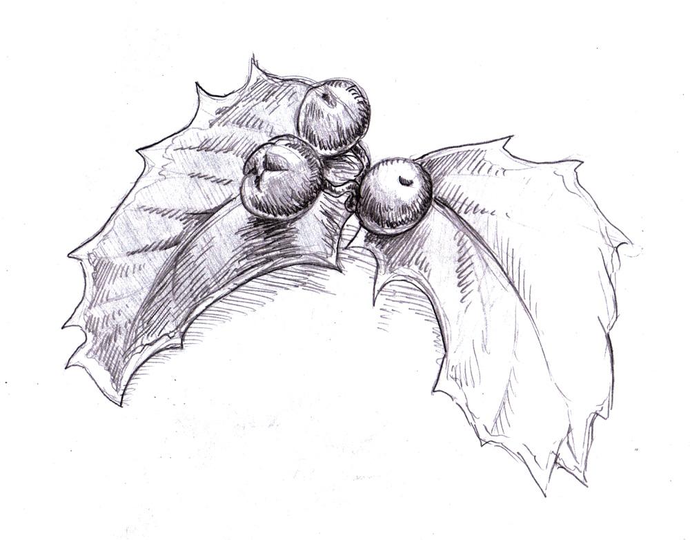 1000x782 Magellin Blog Holly Sketch