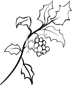 295x350 Holly Leaves Clipart Black And White