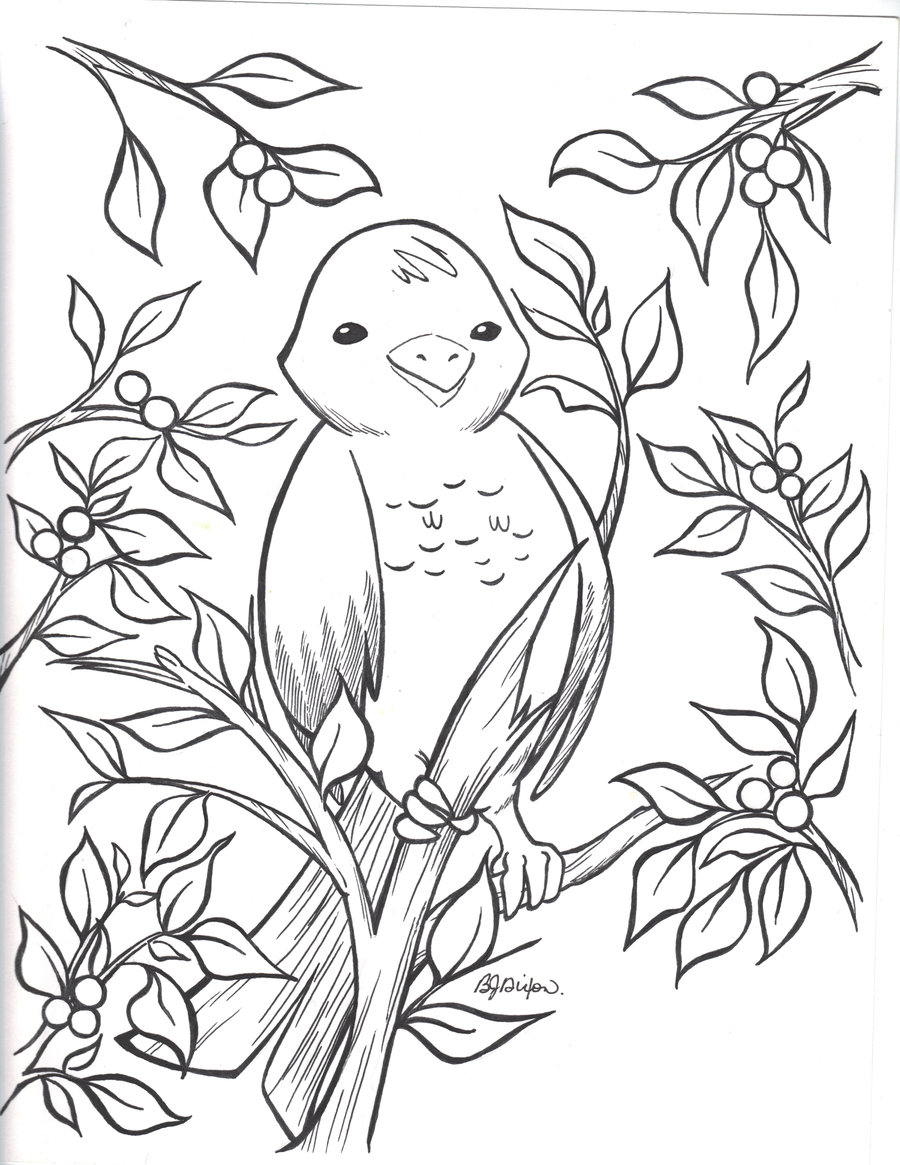 900x1165 Winter Bird And Holly Bush By Jadzialana