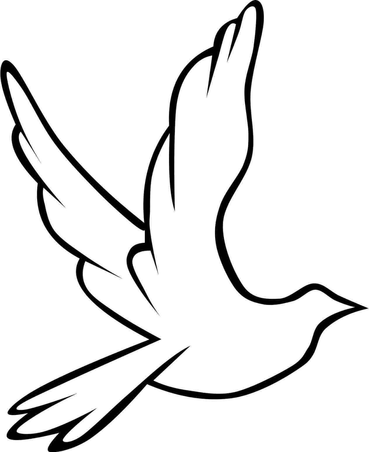 1264x1550 Drawn Turtle Dove Template Turtle Dove Holy Spirit Pencil And