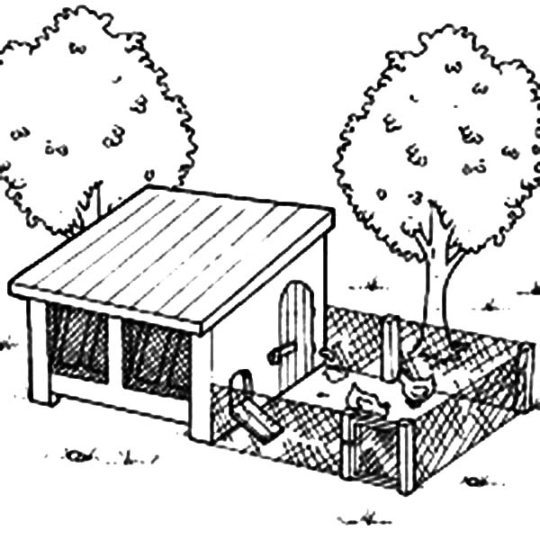 600x600 Chicken Coop Plans Home Depot 8 Free Plans For An Awesome Chicken
