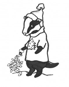 Honey Badger Drawing