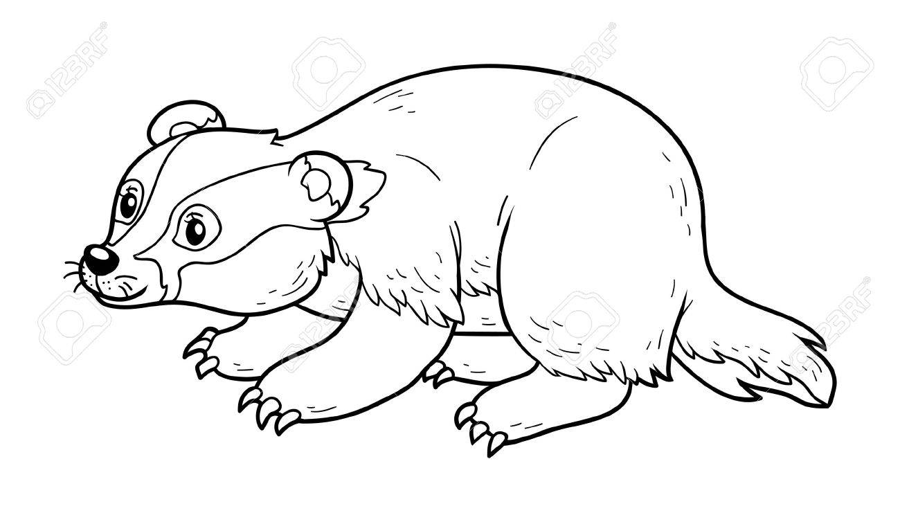 american badger coloring pages | Honey Badger Drawing at GetDrawings.com | Free for ...