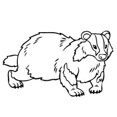 236x236 Badger Badger Tattoo Inspiration Illustrations