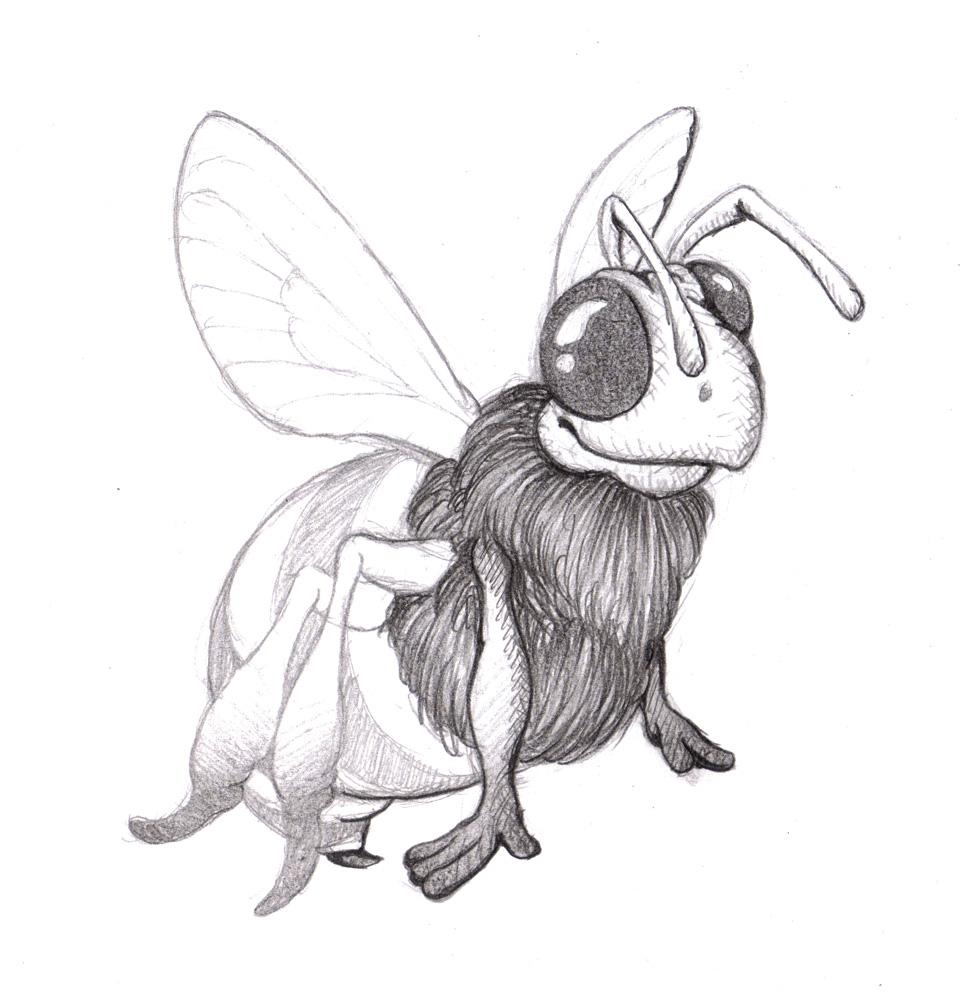 964x1000 Magellin Blog Honeybee Drawing 1