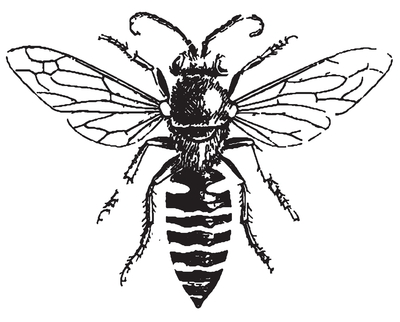 400x322 Busy Bee Coloring Pages Drawing Clip Art Library