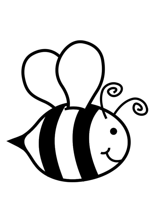 honey bee drawing clip art at getdrawings  free download