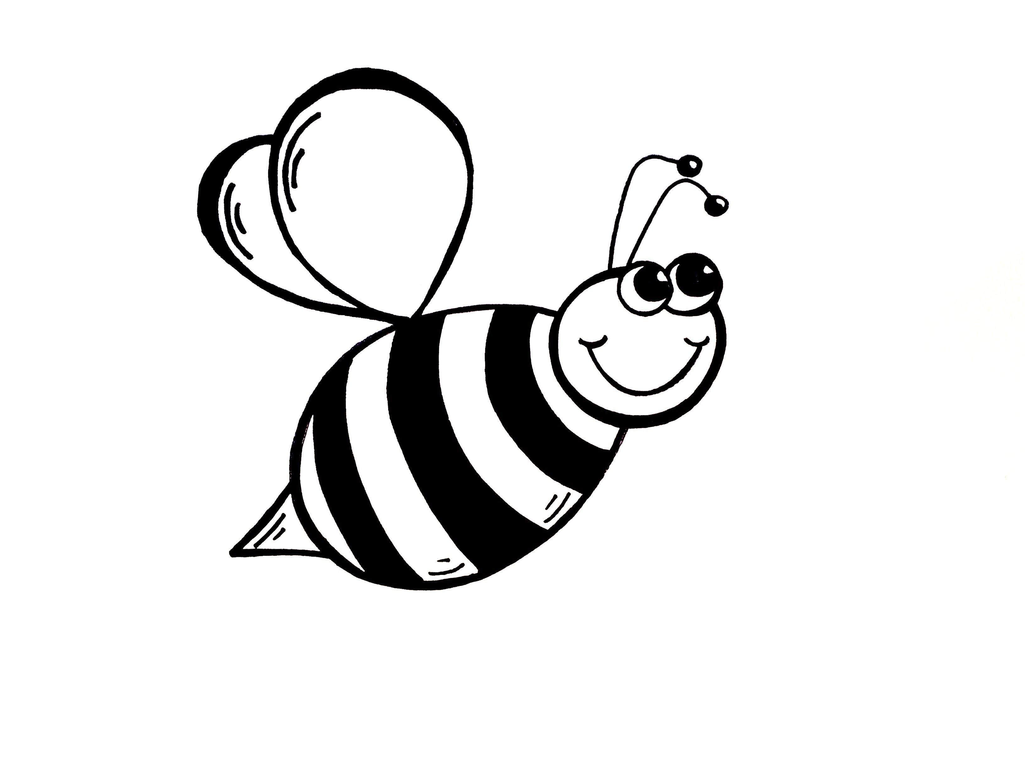 Honey Bee Drawing Clip Art At Getdrawings