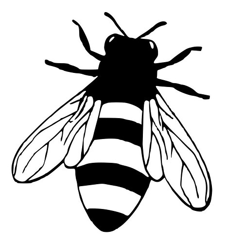 500x500 Honey Bee Die Cut Decal Car Window Wall Bumper Phone Laptop