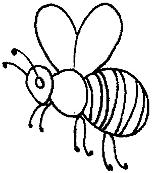 600x683 Honey Bee Outline Coloring Pages Honey Bee Outline Coloring Pages