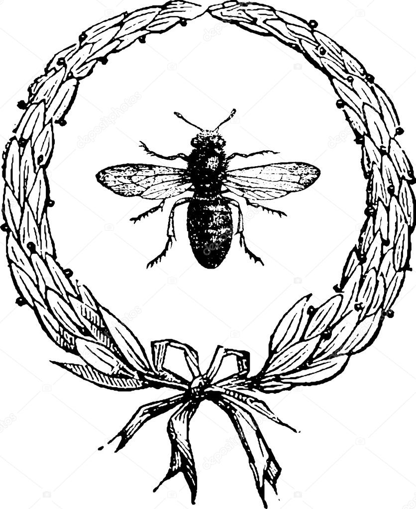 836x1023 Vintage Drawing Bee Stock Photo