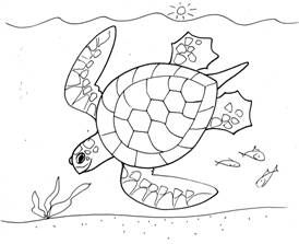 274x223 Turtle Drawing Art Projects