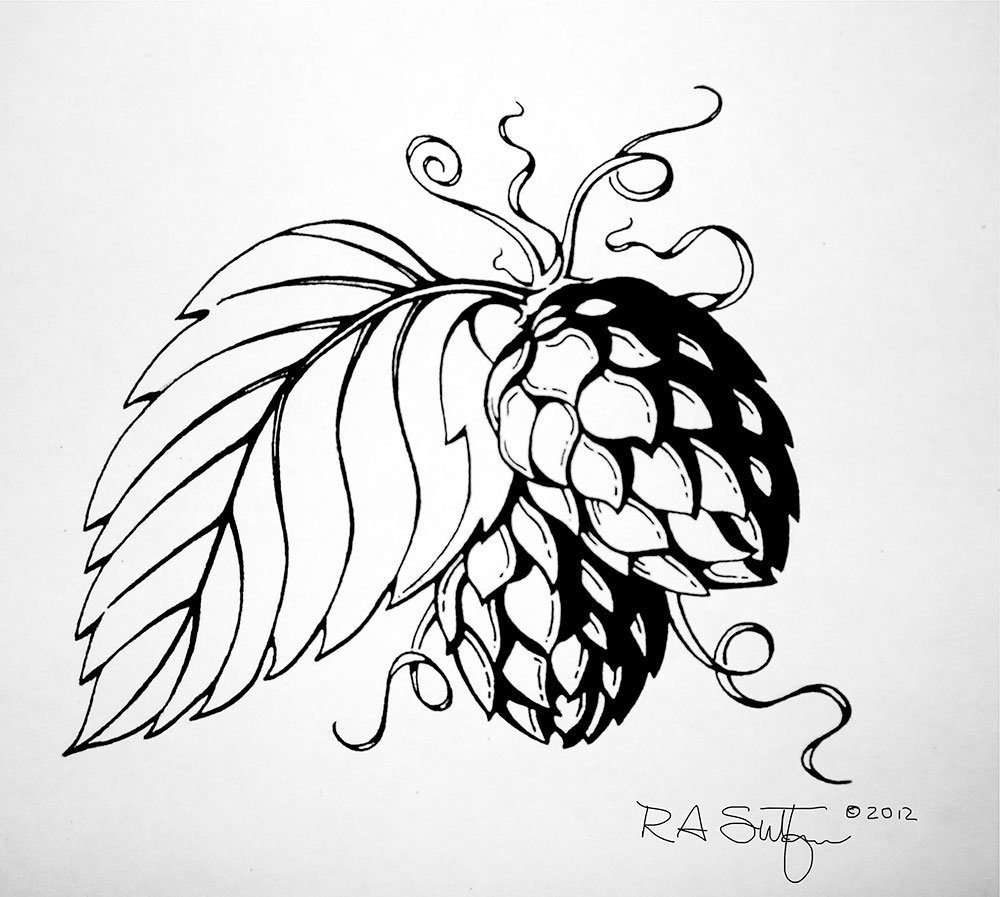 1000x897 Images For Gt Hops And Barley Drawing Hops And Barley