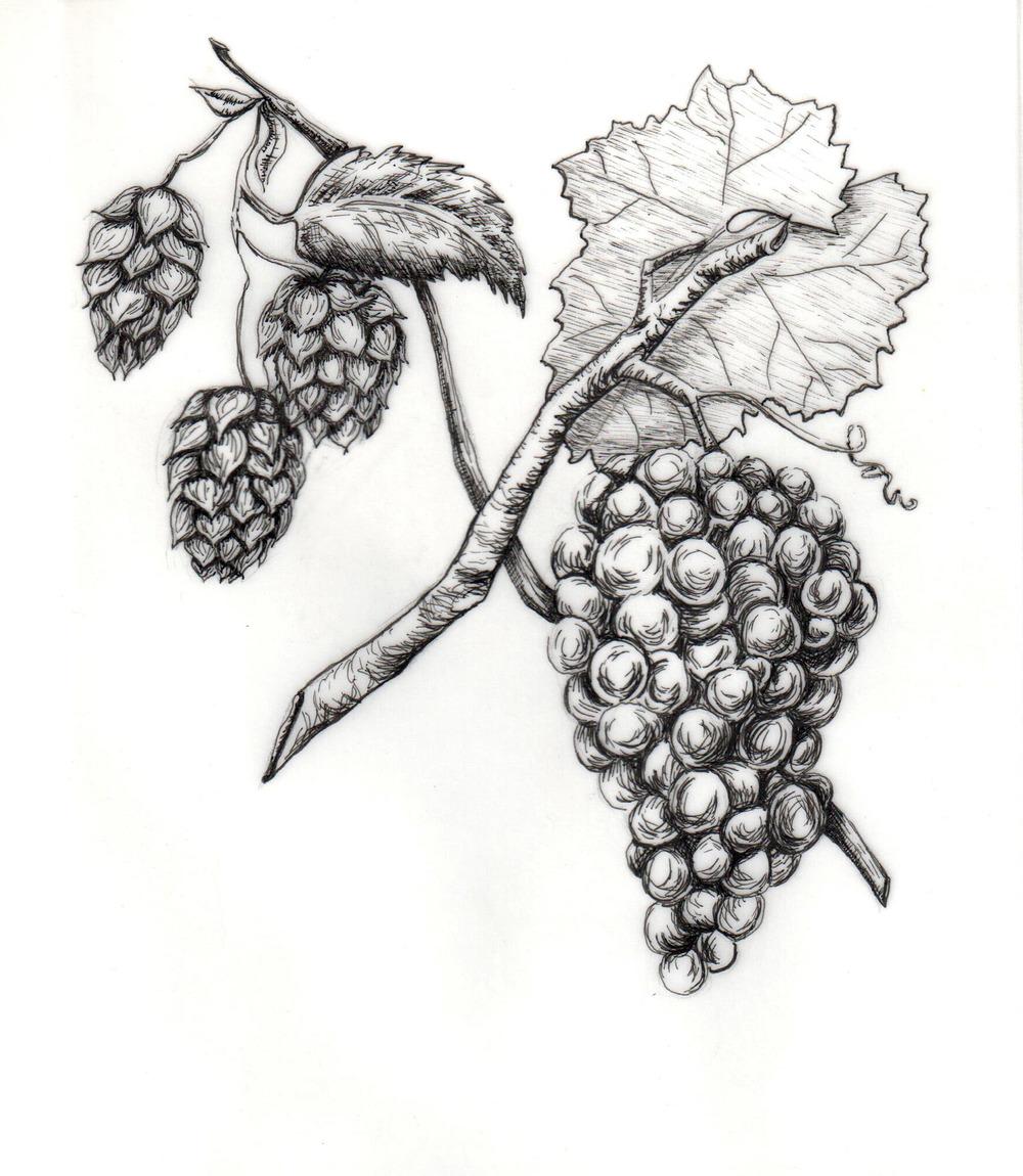 1000x1150 Drawing Oak Grove Press