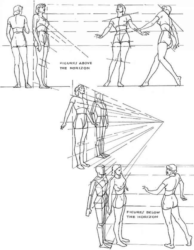 650x836 Perspective In The Figure