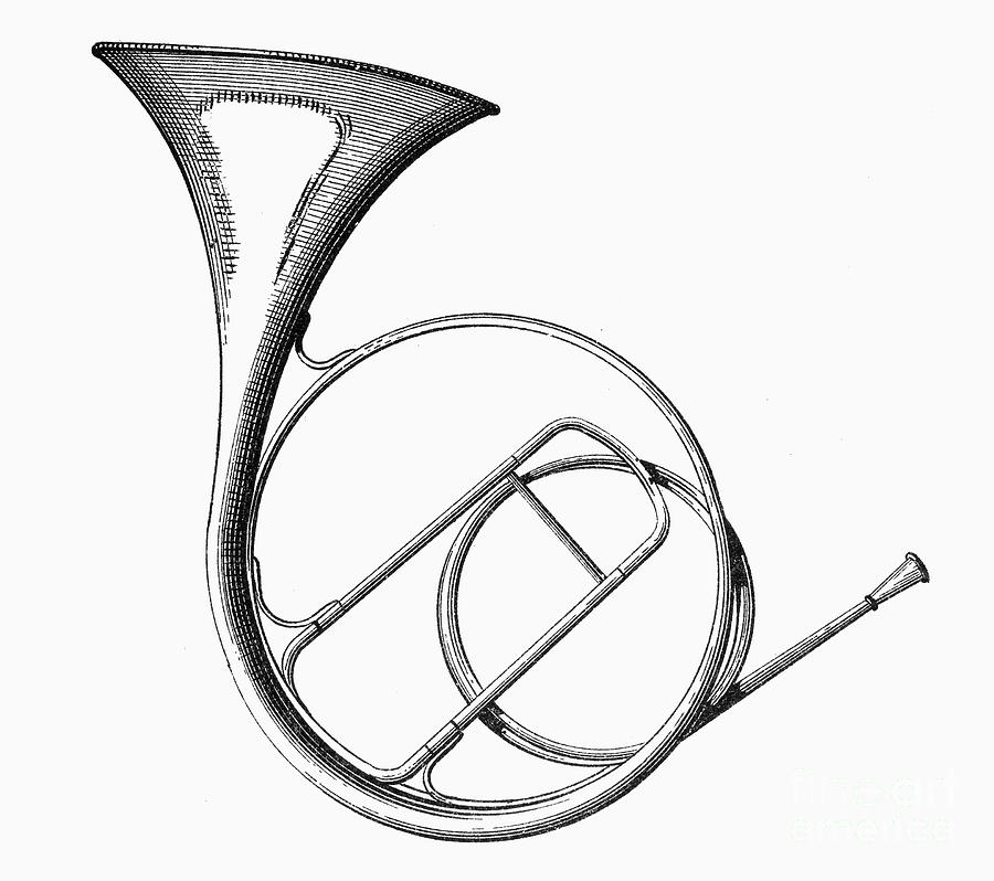 900x798 French Horn Photograph By Granger