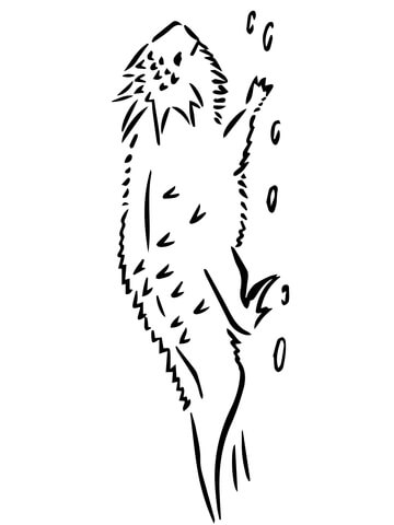 360x480 Horned Toad Lizard Coloring Page Free Printable Coloring Pages