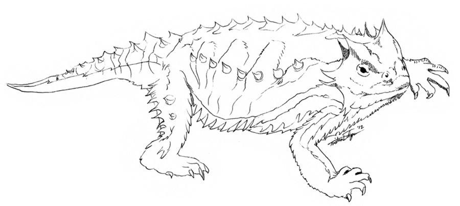 900x403 Mexican Horned Lizard By Scatteredsun
