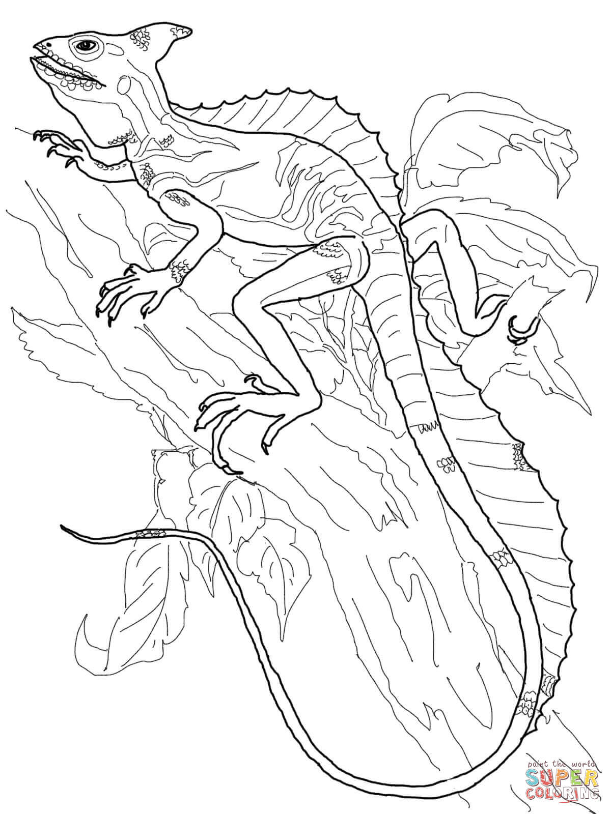 1200x1600 Desert Horned Lizard Coloring Page Free Printable Coloring Pages