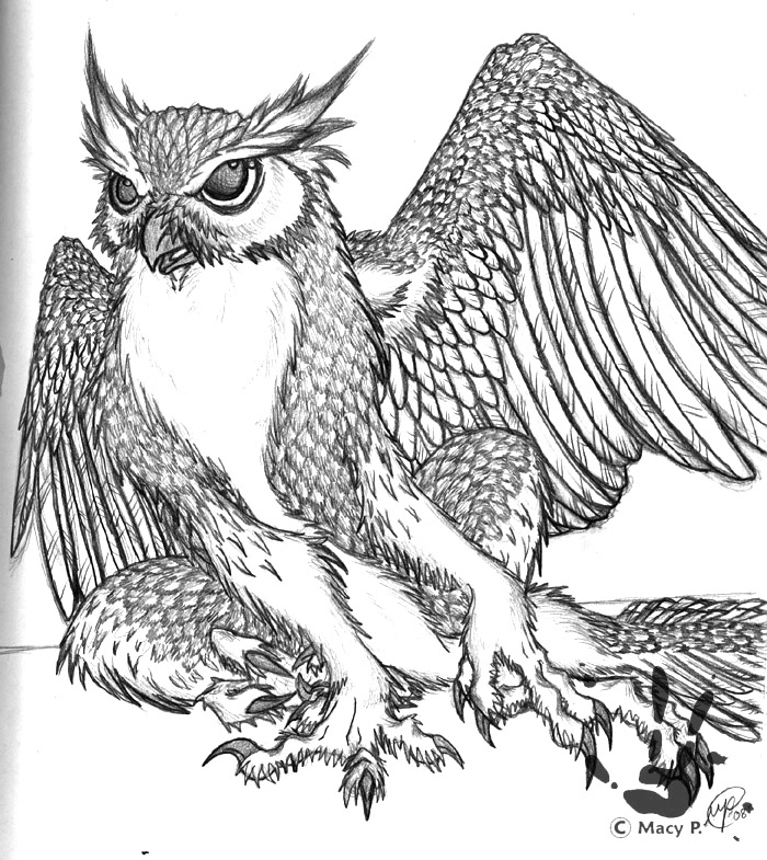700x785 Gryphon Owl By Artistmeiumi