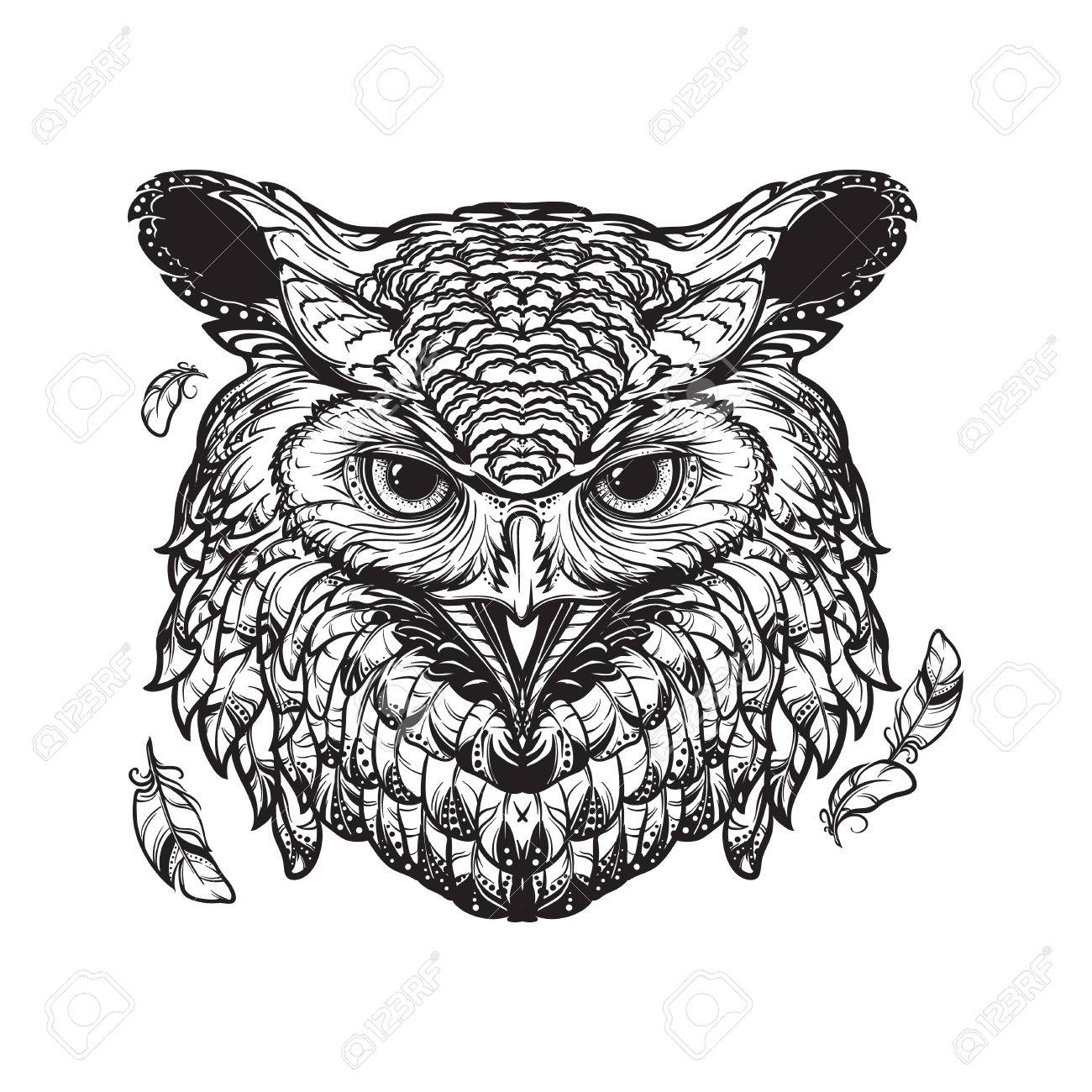 1300x1300 Beautiful Detailed Illustration Of An Owl Head In Frontal View