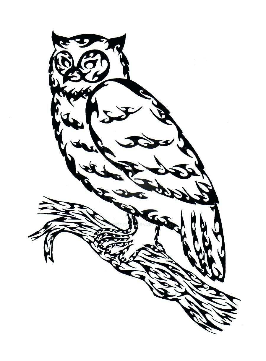 900x1222 Coloring Great Horned Owl Coloring Page Pages Draw An Pictures