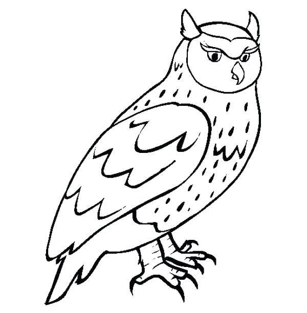 600x612 Great Horned Owl Coloring Page Hand Drawn Owl With Ethnic Floral