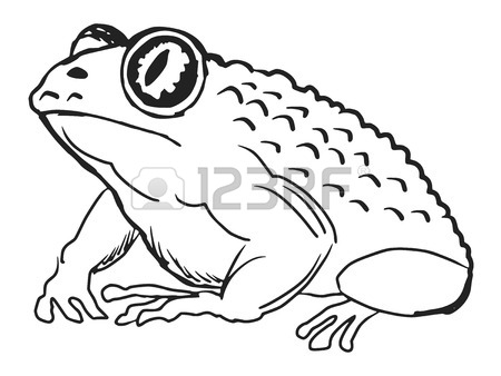 450x338 A Black Illustration Of Silhouette Of Tree Frog Royalty Free