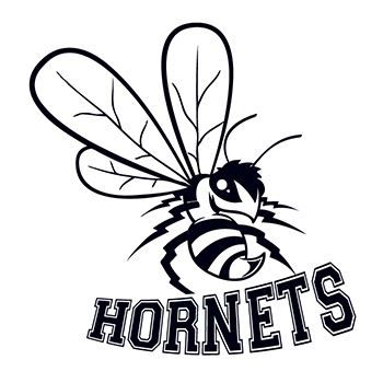 350x350 Hornets Sports Temporary Tattoo For A Go Get