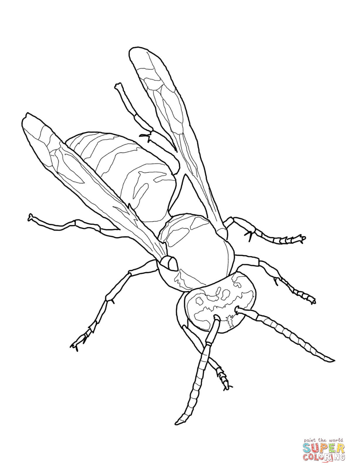 1200x1600 Wasp Coloring Pages Free Coloring Pages