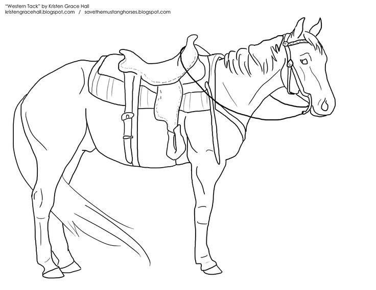 Horse And Cowboy Drawing
