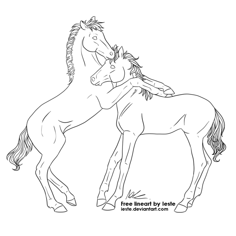 894x894 Free Horse Lineart