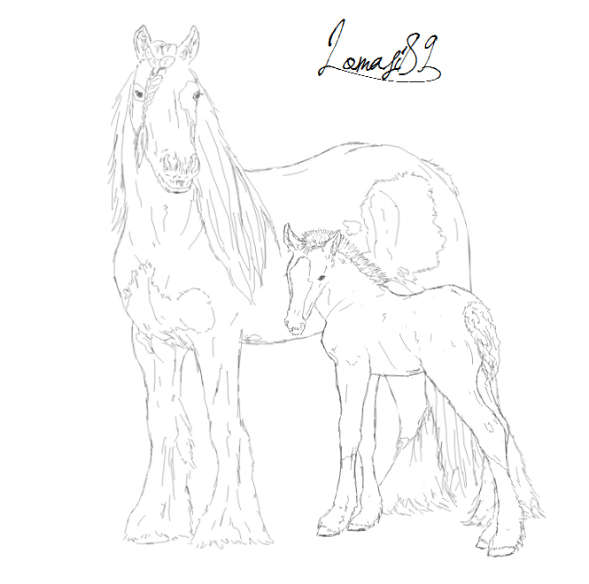 665x660 Gypsy Vanner Mare And Foal By Lomasi89