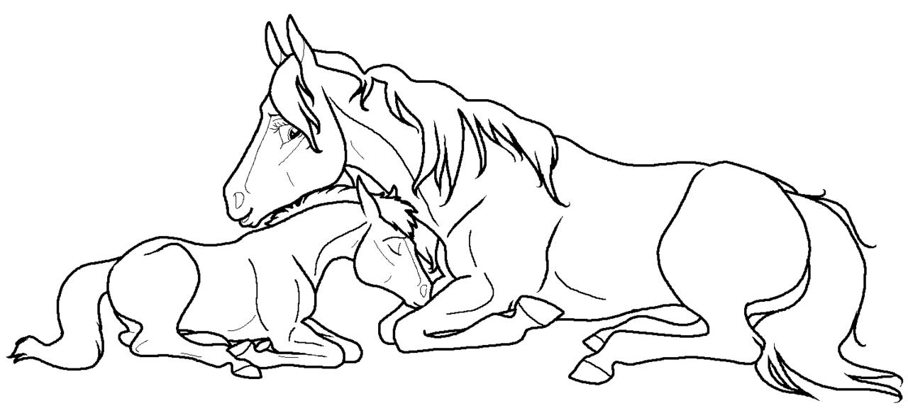 1280x590 Mare foal Lineart Png By Kokamo77