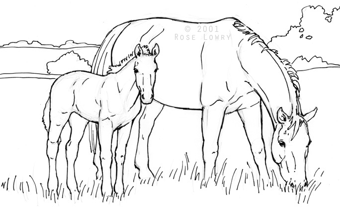 684x418 Mare And Foal Coloring Pages