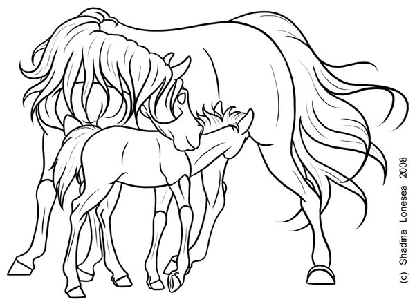 600x440 Mare And Foal