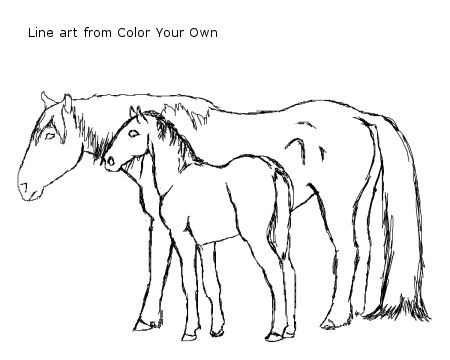 450x360 Nokota Mustang Mare And Foal Coloring Page