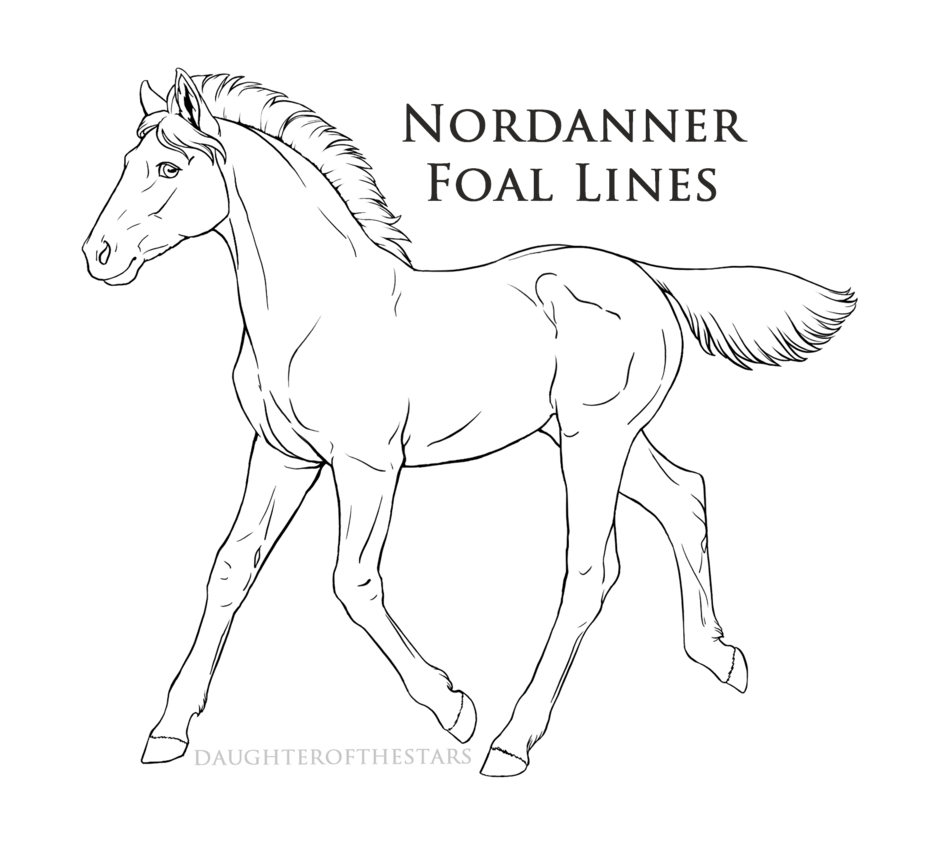 928x861 Official Nordanner Foal Lineart By Cloudrunner64